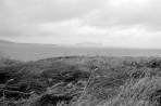 West Ireland #9